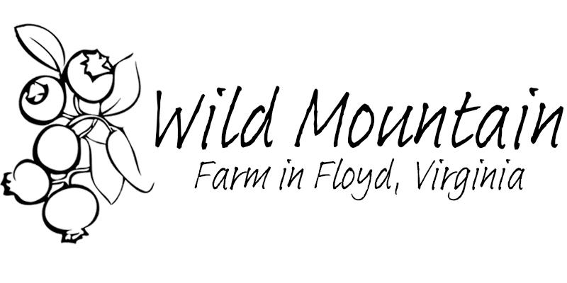 Wild Mountain Floyd